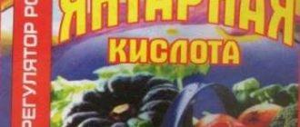 yantarnaya-kislota-dlya-rastenij-2044455