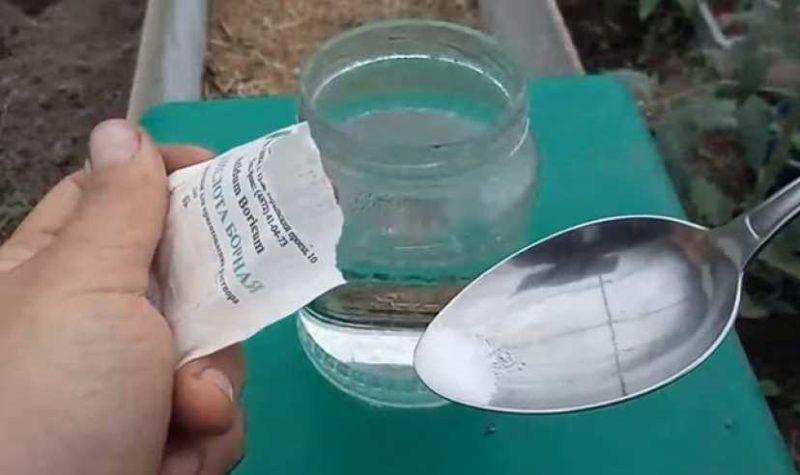 борная кислота для огурцов опрыскивание для завязи пропорции